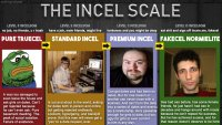 Incel scale.jpg